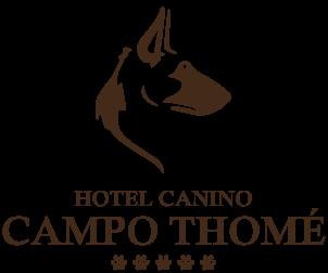 Campo Thomé